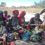 Community Conservation: Weaving & Leading