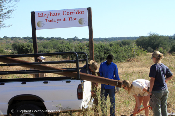 We put up signs demarcating wildlife corridors in the township